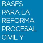 Descargar Bases para la Reforma Procesal Civil
